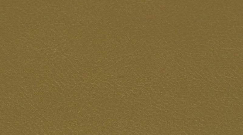 219 MAS 9834 Gold
