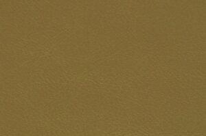 219 - Gold